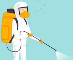 شركة مكافحة حشرات بالمدينة المنورة, افضل شركات مكافحة الحشرات بالمدينة