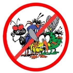افضل شركات رش الحشرات بالطائف, رققم شركه مكافحه حشرات بالطائف, ارخص شركات مكافحه حشرات بالطائف, مكافحه الحشرات بالطائف